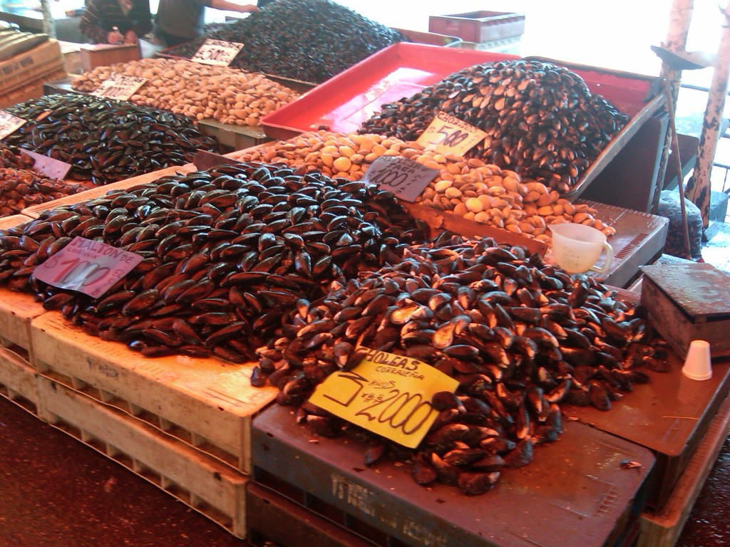 Mussels in the market