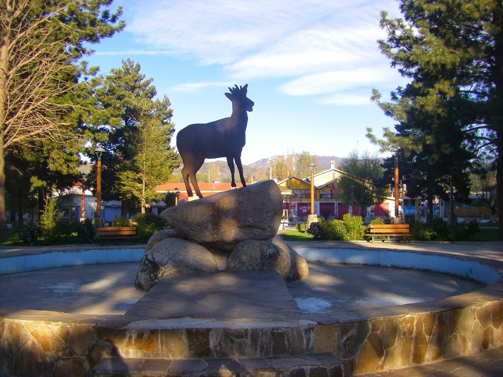 Huemul Statue in the Cochrane Central Plaza