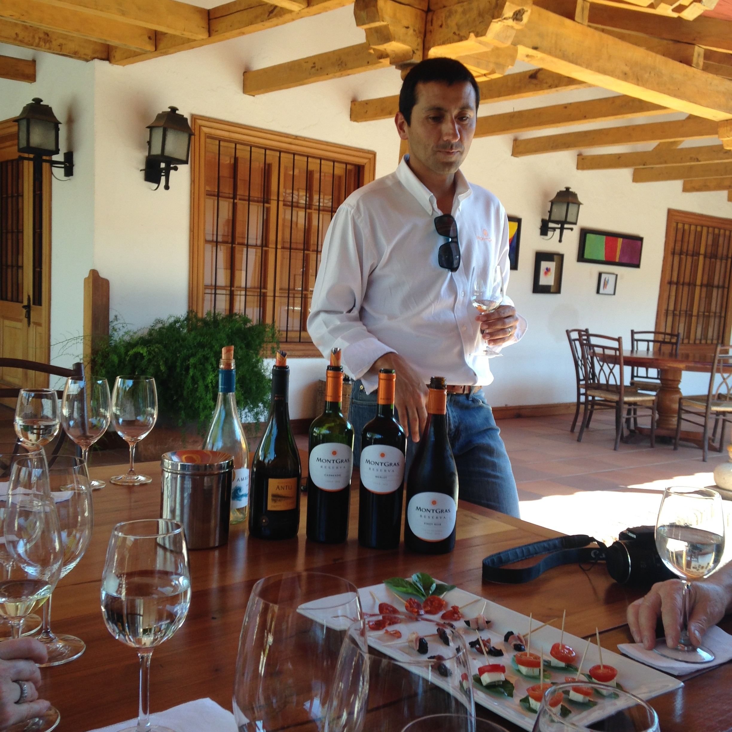 Tasting at Viu Manent wineries, Colchagua Valley